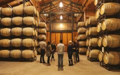 Gary Farrell Gary Farrell Winery Cellar Winery Image
