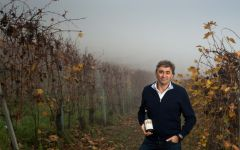 Vietti Luca Currado Winery Image