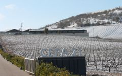 Bodegas Cepa 21 Cold Winters Winery Image