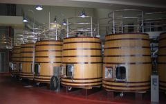 Vineyard 29 Oak Tank Line Winery Image