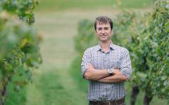 Villa Maria Nick Picone - Group Chief Winemaker Winery Image