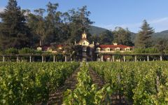 Inglenook  Winery Image