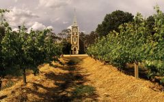 Henschke Hill of Grace Vineyard Winery Image