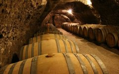 Domaine Vincent Careme Winery Image