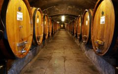 Badia a Coltibuono Badia a Coltibuono Barrel Room Winery Image