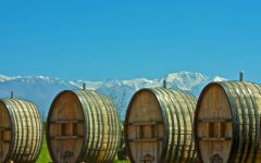 Domaine Bousquet Outdoor Barriques Winery Image