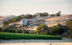Fowles Wine Rocky Granite Outcrops Winery Image