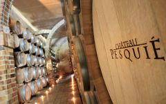 Chateau Pesquie Chateau Pesquie ageing cellar Winery Image