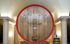 Tommasi Winery Image