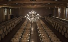 Emilio Moro Barrel Room Winery Image