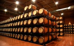 Borsao Bodega Borsao's Barrel Room Winery Image
