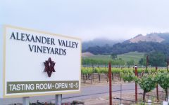 Alexander Valley Vineyards Alexander Valley Vineyards Entrance Winery Image