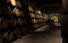 Sandeman Barrel Room Winery Image