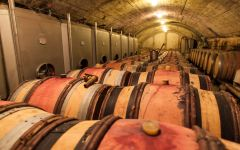 Andre Brunel Brunel Cellar Winery Image