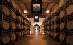Castello Banfi Banfi Barrel Room  Winery Image