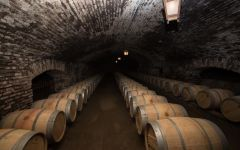 Concha y Toro Barrel Room Winery Image