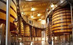Bodegas Vega Sicilia Winemaking at Bodegas Vega Sicilia Winery Image