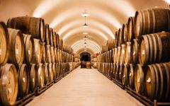 Calera Inside Calera Caves Winery Image