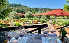 Tablas Creek Vineyard Tablas Creek Tasting Patio Winery Image