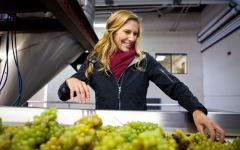 Ferrari-Carano Sarah, executive winemaker Winery Image