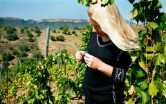Clos i Terrasses Winemaker & Proprietor Daphne Glorian Winery Image