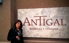Antigal  Miriam Gómez Winery Image