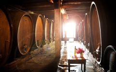 Domaine Weinbach Winery Image