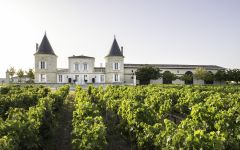 Chateau Lilian Ladouys  Winery Image