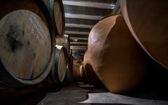 Clos i Terrasses Laurel Cellar: Older Barrels and Amporae Winery Image