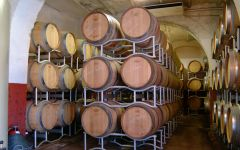 Petrolo Patrolo Barriques Winery Image