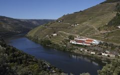 Quinta de la Rosa Located alongide the Douro River Winery Image