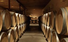 Chateau Monbousquet  Winery Image