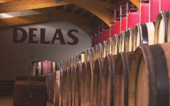 Delas Freres Wine cellar Winery Image