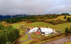 A to Z Aerial View of A to Z Winery Image