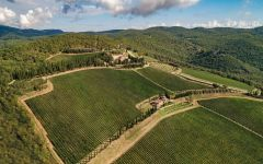 Castello di Albola Santa Caterina vineyard Winery Image