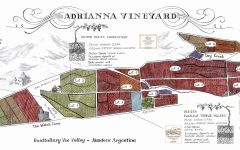 Catena Adrianna Vineyard Winery Image