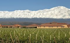 Finca Decero Argentina after a Summer snowfall Winery Image