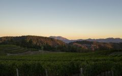Pride Mountain Vineyards Pride Estate at Sunset Winery Image