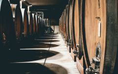 G.D. Vajra Aging Cellar  Winery Image