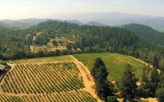 Burgess Cellars Winery Ranch Vineyard Winery Image