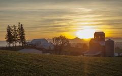 Stoller Family Estate Winery at sunset Winery Image