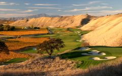 Wente Vineyards Golf Course Long Scenic View Winery Image
