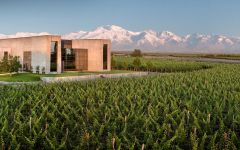 Vina Cobos The Winery in Mendoza Winery Image