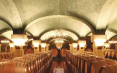 Caparzo Panorama of Cellar Winery Image