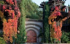 Rutherford Hill Winery Entrance to the caves Winery Image