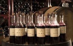 Ornellaia Meticulously Selected Wine Samples Winery Image