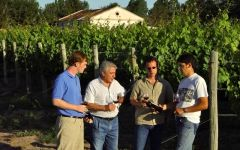 Altocedro Altocedro Vineyard Management Winery Image
