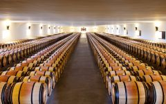 Chateau Mouton Rothschild The Great Barrel Hall Winery Image