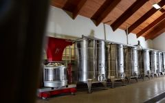 Domaine Drouhin Oregon Stainless Steel Vats in the Cellar Winery Image
