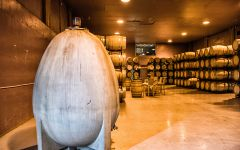 Evodia Evodia Barrel Room Winery Image